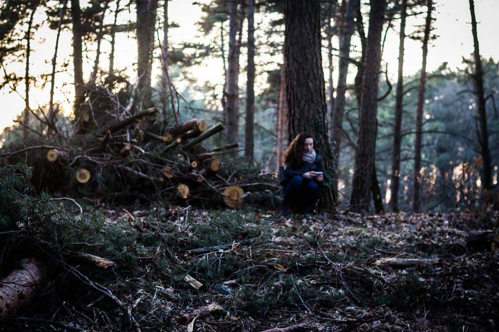 La deforestazione di Pianbosco