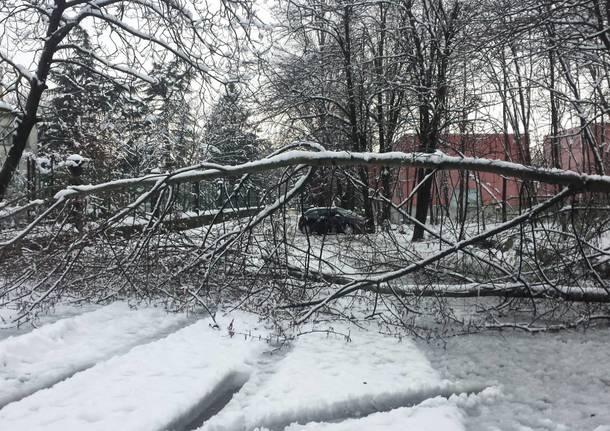 I guai della neve