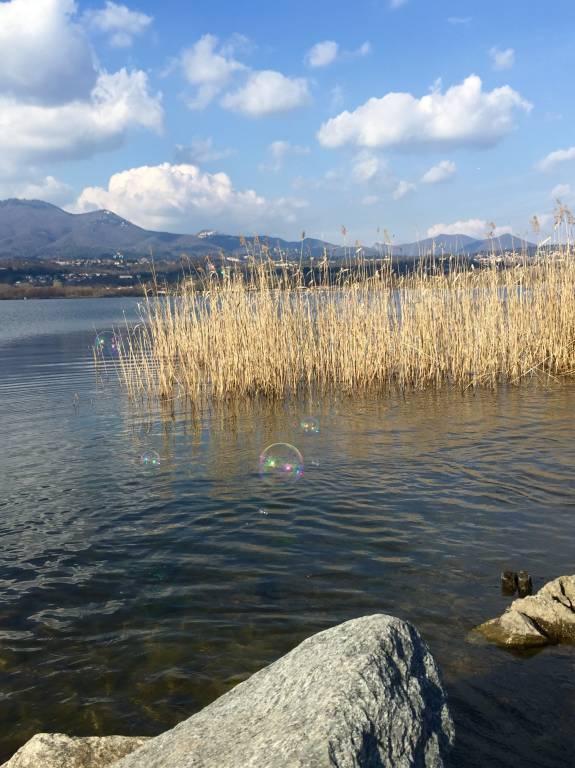 bolle di sapone sul lago di Varese