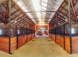 Da Varese all'Australia, per allevare cavalli