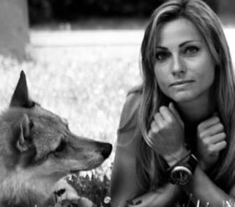 la ricerca su lupi e labrador dell'università di budapest