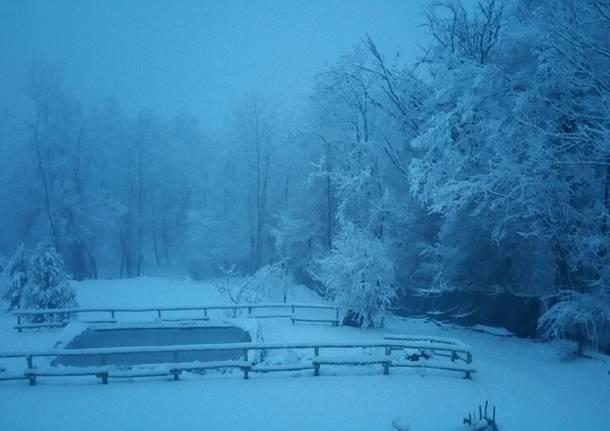 Neve 5 marzo 2016