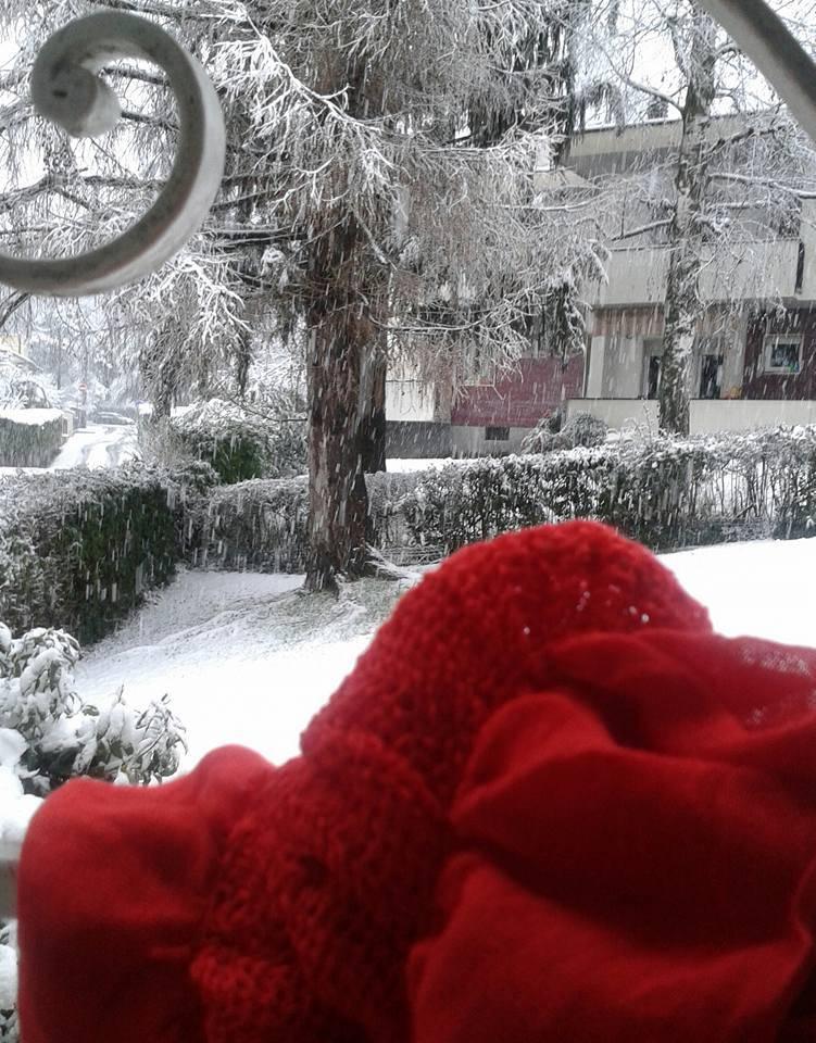 """Neve, le foto di """"Oggi nel Varesotto"""" – 2"""