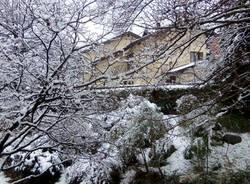 """Neve, le foto di """"Oggi nel Varesotto"""" – 3"""