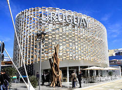 padiglione uruguay expo origgio