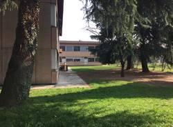 scuola scuole Cedrate Gallarate De Amicis primaria elementari