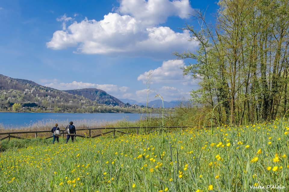 La primavera a Corgeno