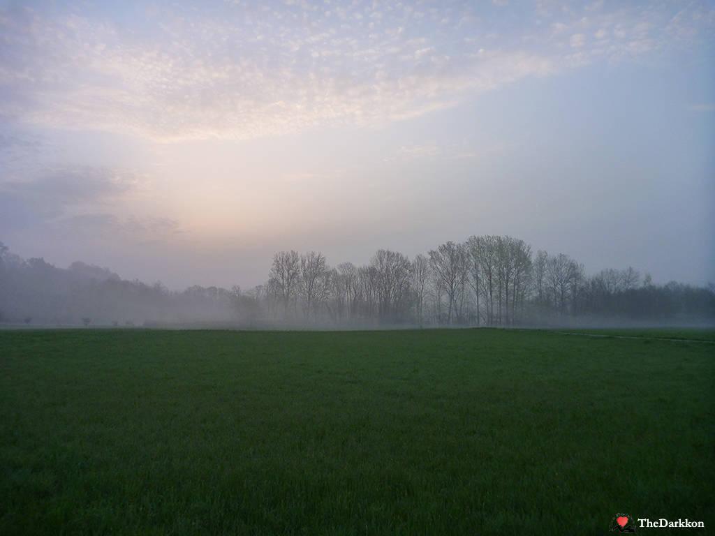 Schiranna - Alba e un velo di Nebbia