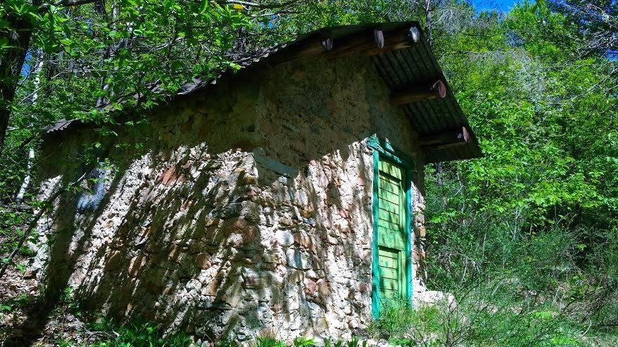 Passeggiata nei boschi di Brinzio