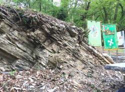 Il sito fossilifero di Cà del Frate