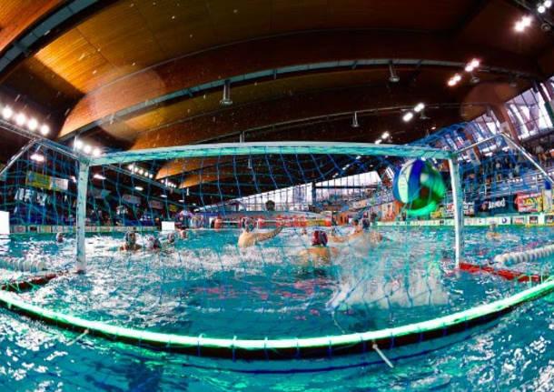 La nazionale di pallanuoto del giappone a busto varesenews - Zero piscina busto ...