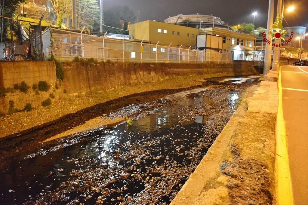 Petrolio nel fiume a Genova