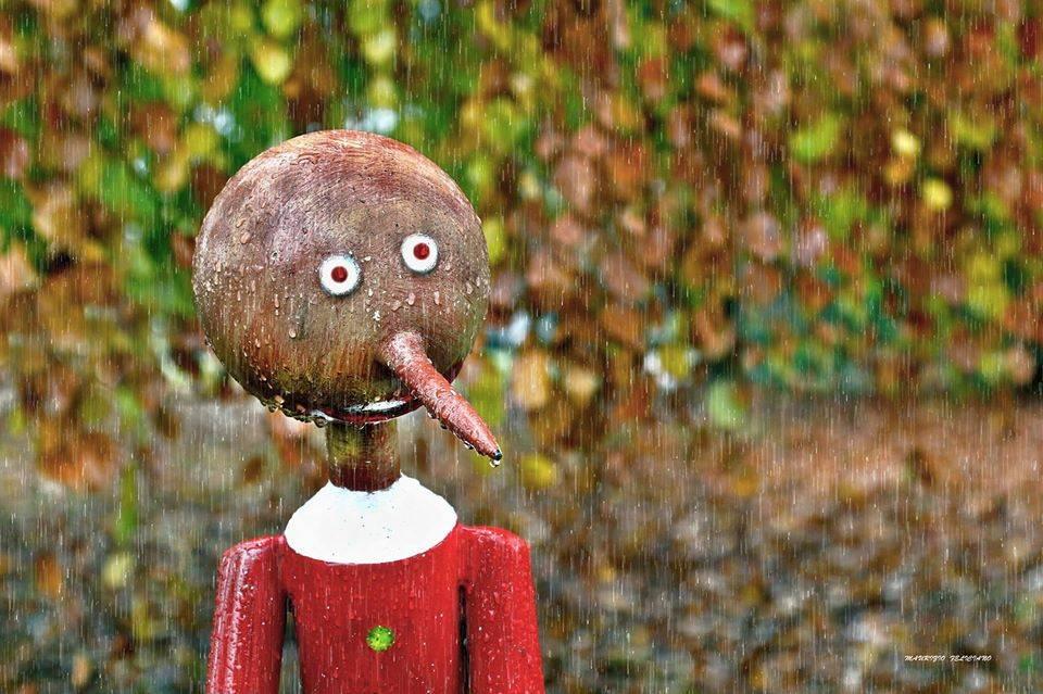 Pinocchio bagnato alla Schiranna