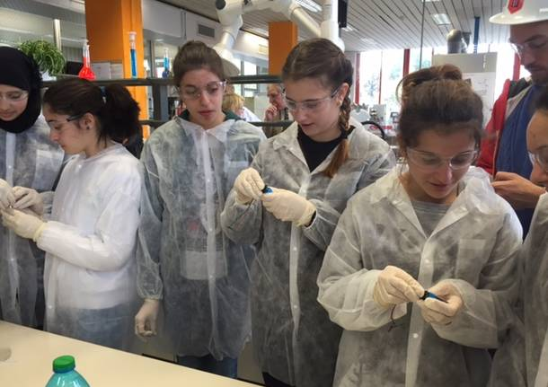 studenti chimica lamberti albizzate