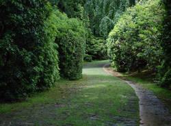 Notizie di oasi zegna - VareseNews cc41a1bd9c3