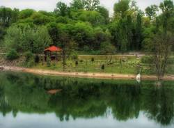 """Una passeggiata nel """"Parco degli Aironi"""" a Gerenzano"""