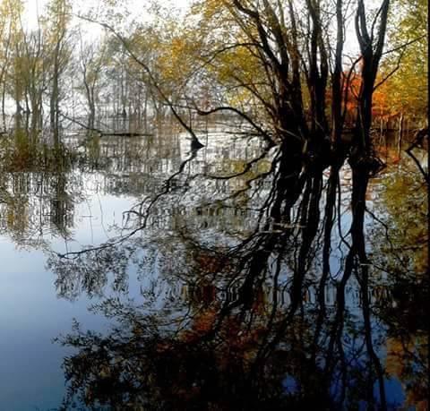 Riflessi lago - foto di Giuli Asc