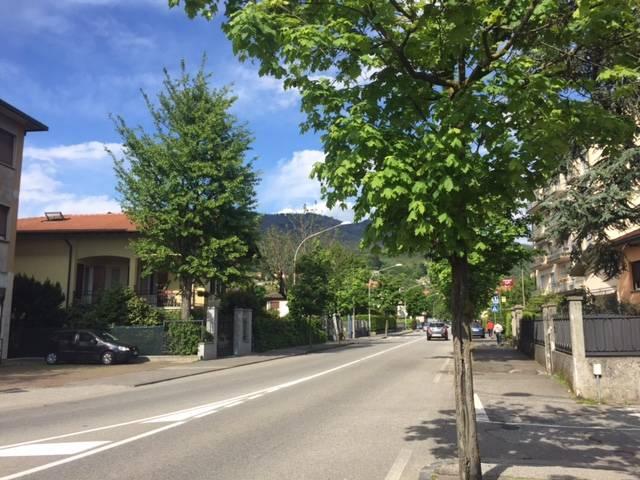 Puzze in viale Ticino, i residenti si lamentano