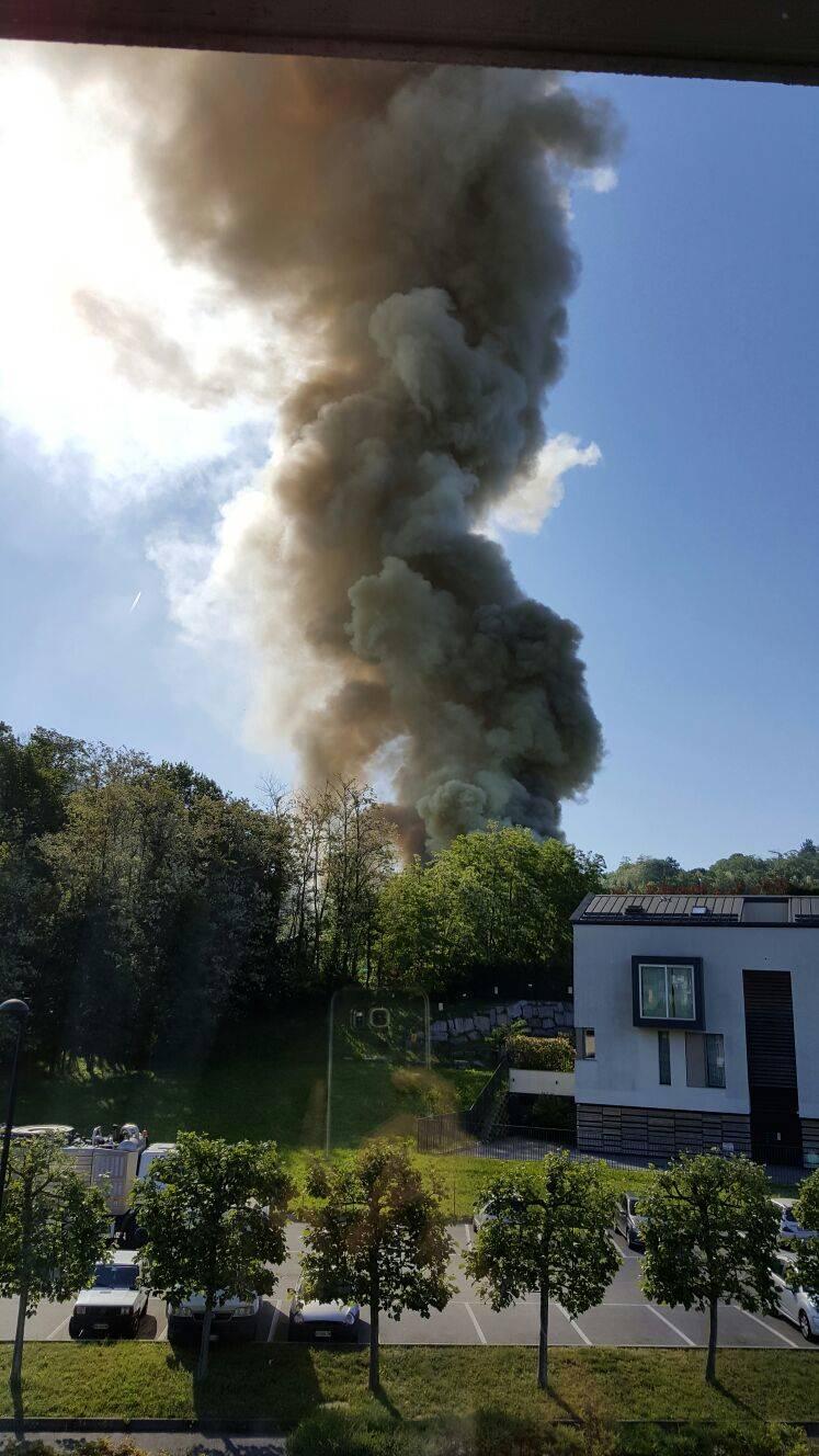 Incendio alla Fattoria Canale