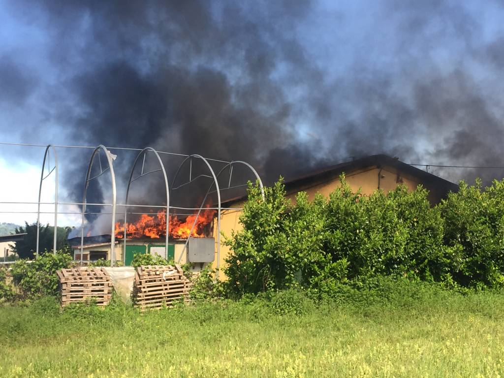 Incendio fattoria Canale Azzate
