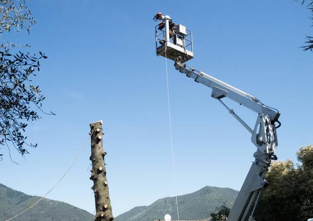 """Cestello bloccato, boscaiolo """"prigioniero"""" a 15 metri"""