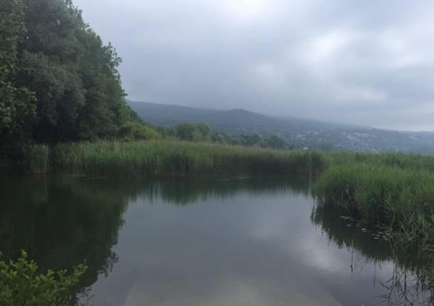 Lago e Bardello, due luoghi in uno