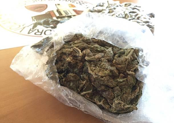 Marijuana sequestrata dalla polizia