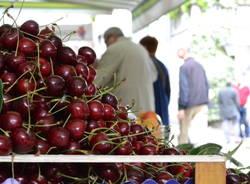 Varese invasa dalle ciliegie