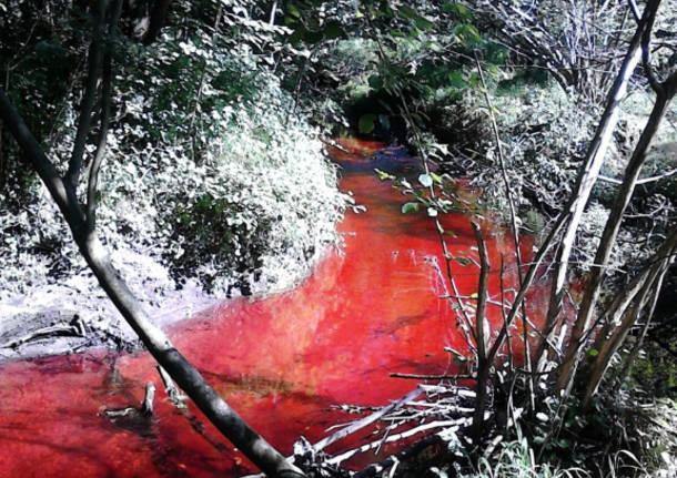 Il rio Rancina cambia colore