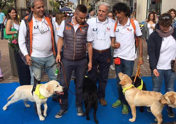 pet therapy piazza san giovanni