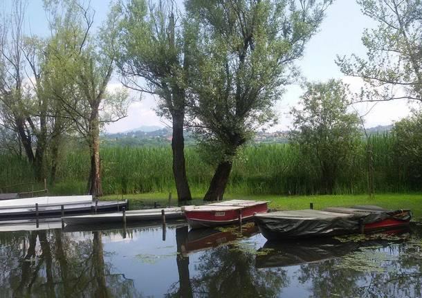 Il lago di Varese al porticciolo di azzate