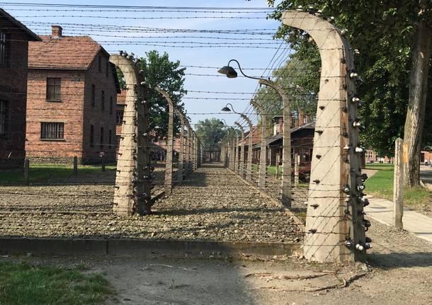 Papa Francesco ad Auschwitz