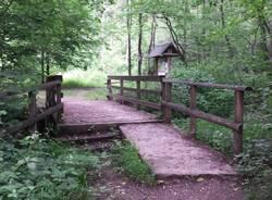 Parco della valle del Boia Besnate Casorate Sempione