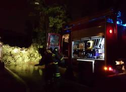 vigili del fuoco notte albero caduto alberi caduti allagamento