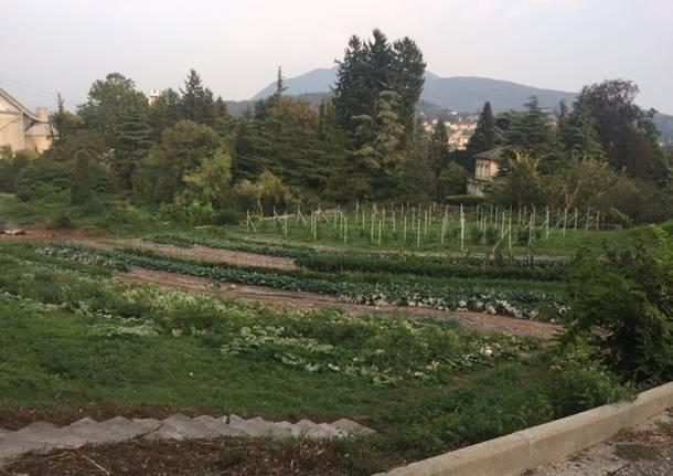 Il regno di Laerte, l\'agronomo educatore