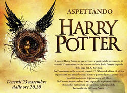harry potter bustolibri.com
