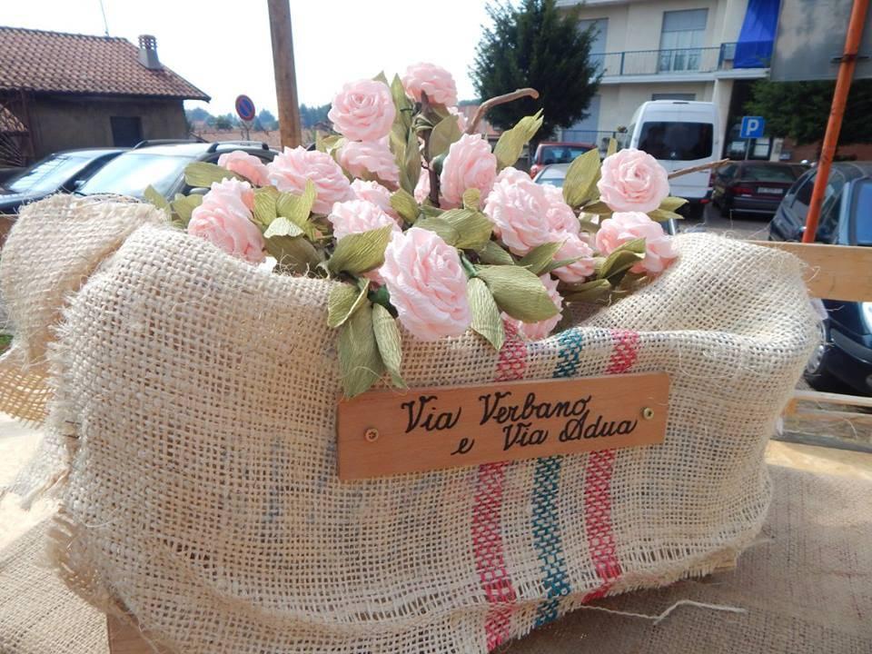 I fiori di san Tito