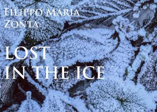 lost in ice