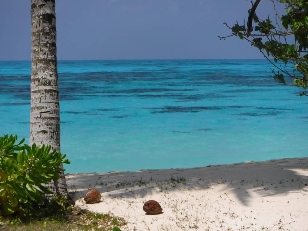 Seychelles vergine tra i Paradisi