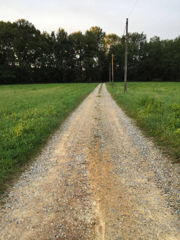 "Via Molino Rocco: una strada ""bianca"" da salvare"