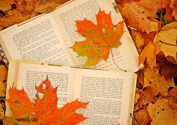 Risultati immagini per autunno letterario