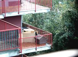Lasciano il cane sul balcone per mesi: denunciati dalle Guardie zoofile