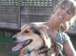 Brusimpiano - sequestro cane