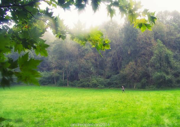 Eolo Campo dei Fiori Trail Foto di Andrea Plebani