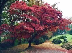 I colori d'autunno dei lettori