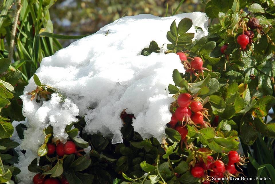 La prima neve alla Forcora
