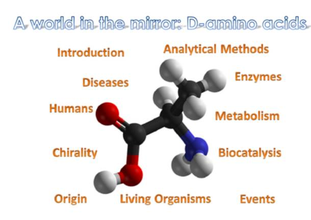 ricerca su d amino acidi