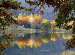 Riflessioni d'autunno