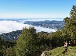 Saltrio - Orsa Pravello Trail 2016 - foto di Andrea Ostoni