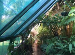 Serra Utopia Tropicale a Comerio